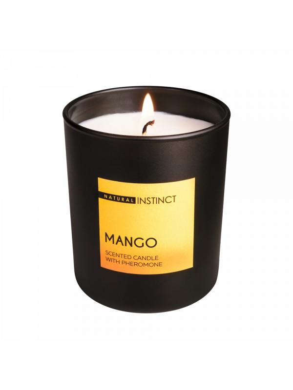 Ароматическая свеча Манго