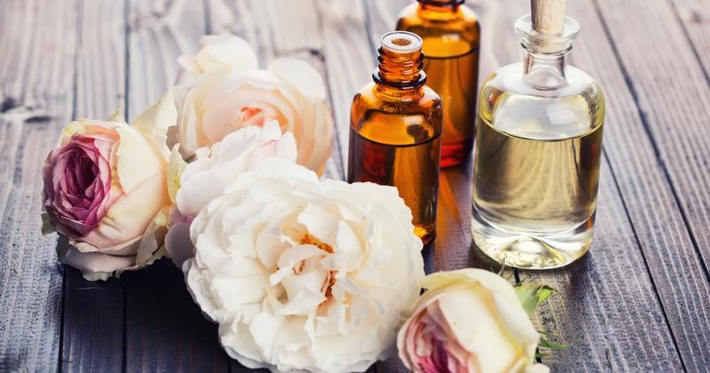 Почему нельзя выбирать парфюмы в подарок и как дезодоранты нам мешают искать свою половинку